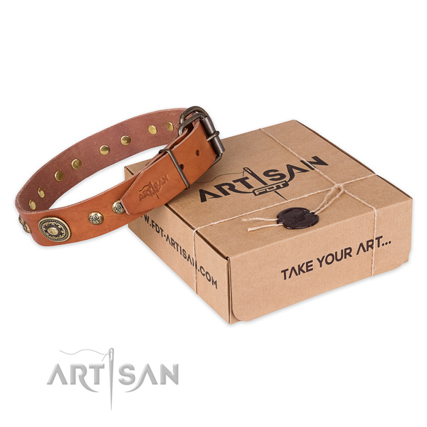Natural Leather Collar for Your Pet