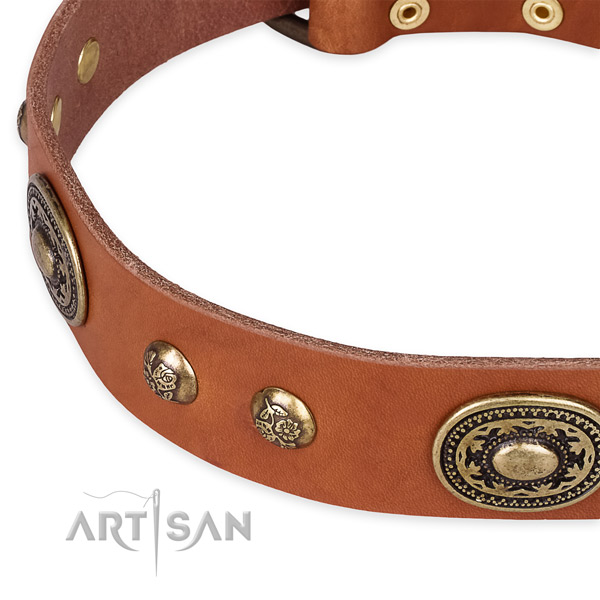 Natural Leather Collar for Your Pet Daily Walking