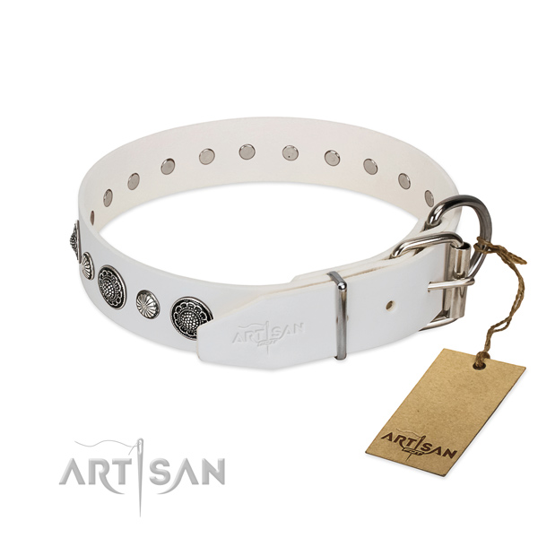 White leather FDT Artisan dog collar with sturdy chrome-plated buckle