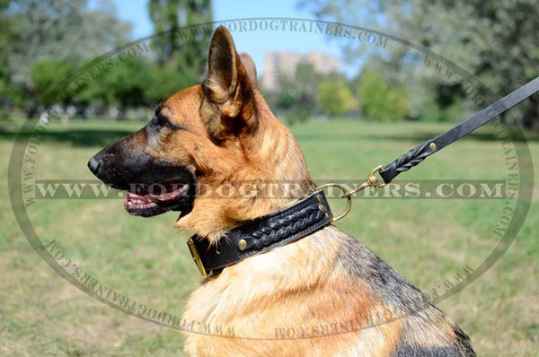 German Shepherd Collar Made of 2 Ply Leather