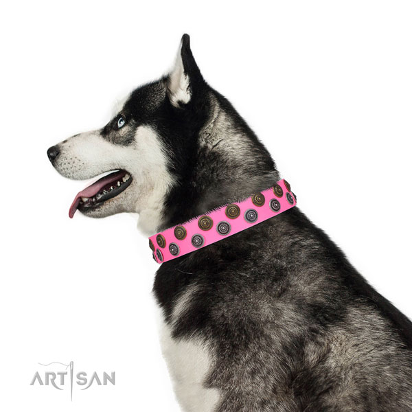 Husky inimitable leather dog collar with adornments