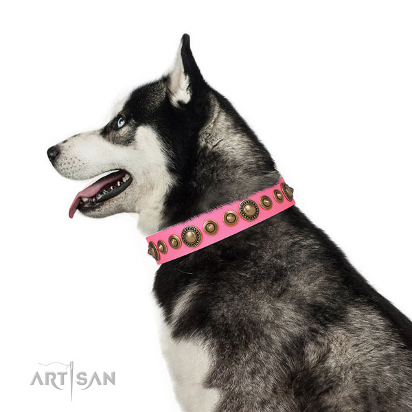 Husky comfortable full grain genuine leather dog collar with embellishments