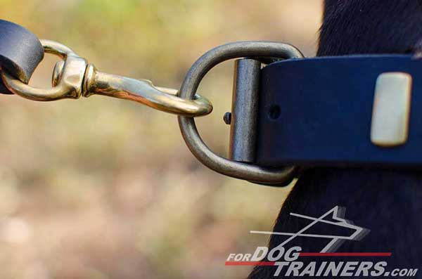 Strong brass D-ring for leash attachment