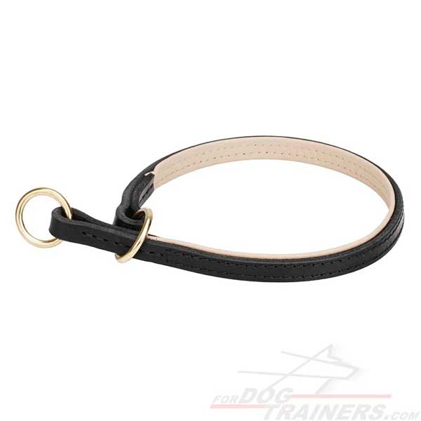 Leather Choke Collar for training