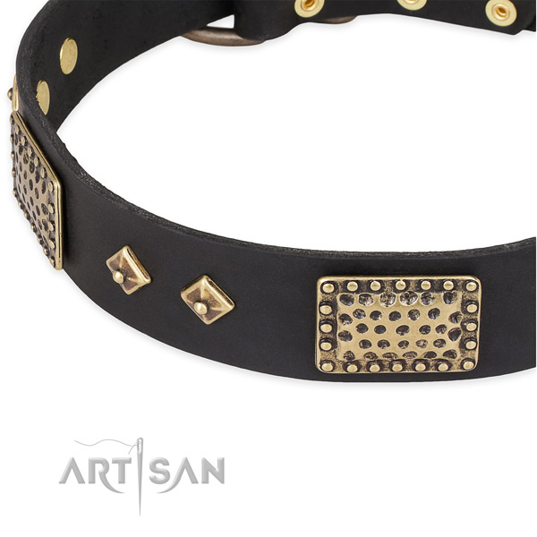 Adorned with plates and studs black leather dog collar