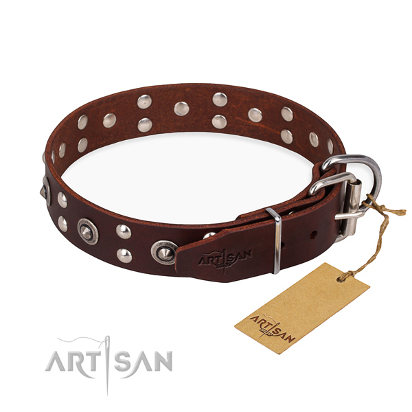 Brown leather dog collar with reliable fittings