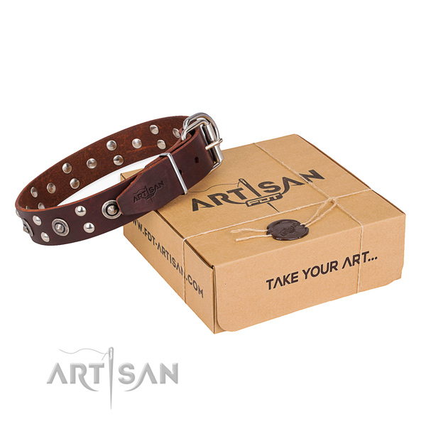 Brown leather dog collar for safe walking