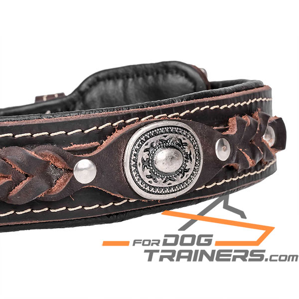 Brown Leather dog collar for comfy walking