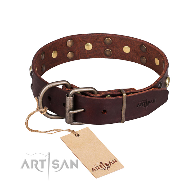 Brown leather dog collar with adjustable buckle