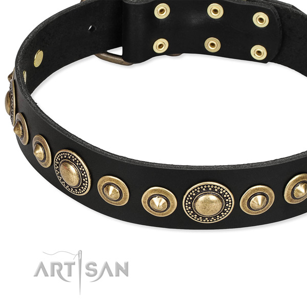 Leather dog collar with reliably attached studs