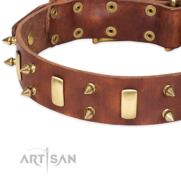 Exquisite tan dog collar