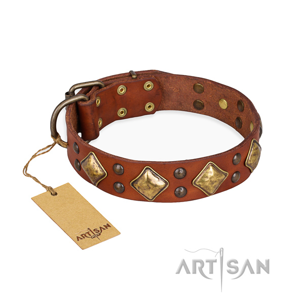 Tan leather dog collar with sparkling decorations