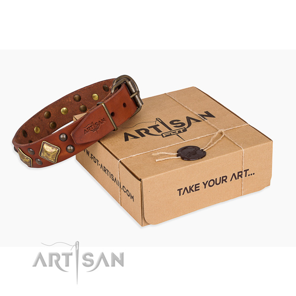 Tan leather dog collar with square and round decorations
