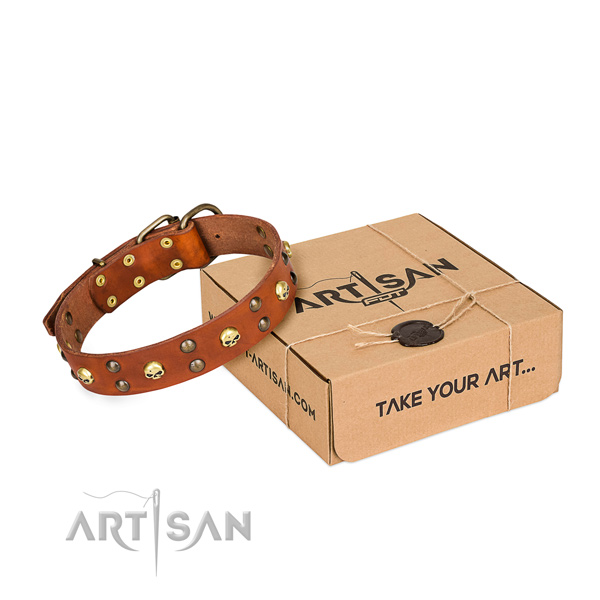 Elegant-looking tan leather dog collar