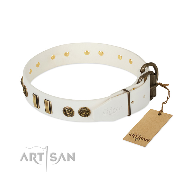 White leather dog collar with strong and reliable buckle