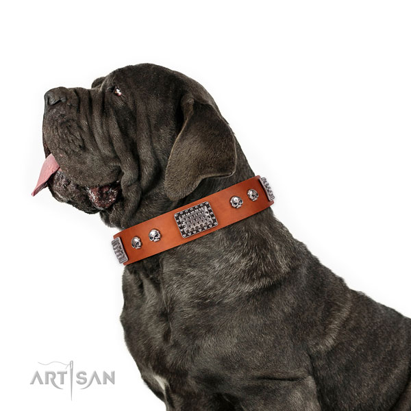 Mastino Neapoletano basic training dog collar of fashionable natural leather