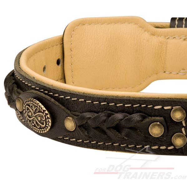 Super Comfy Leather Dog Collar