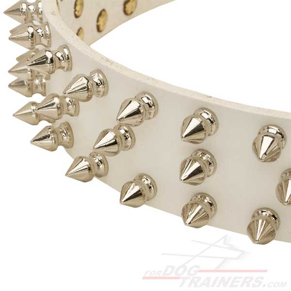 Spikes on White Leather Dog Collar