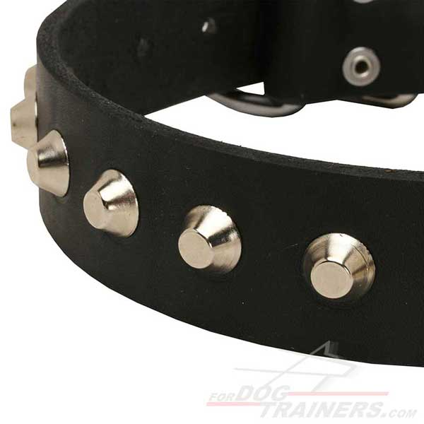 Nickel fittings on Leather Dog Collar