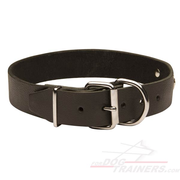 Leather Dog Collar with Buckle and D-ring