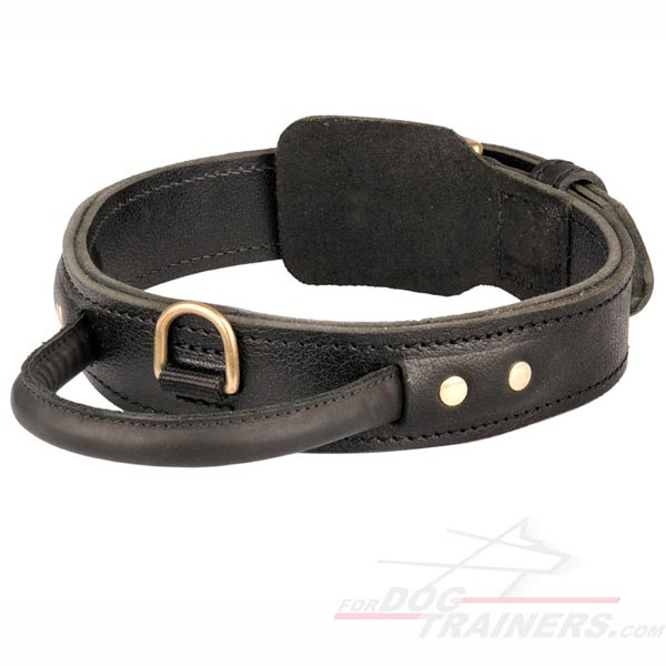 Agitation Dog Leather Collar