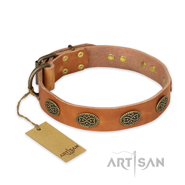 Tan leather dog collar with rust-proof studs