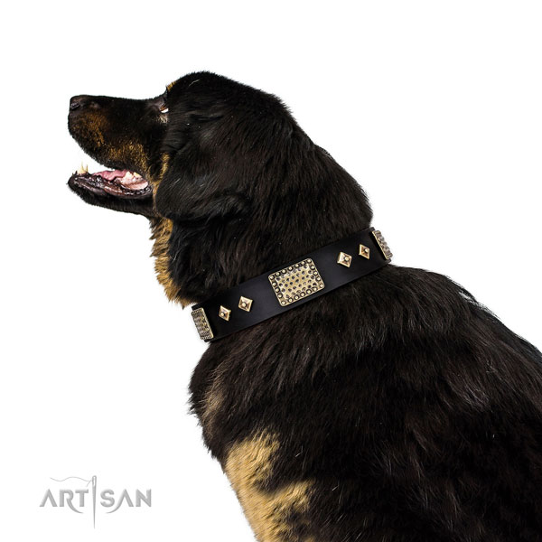 Tibetian Mastiff easy wearing dog collar of fine quality leather