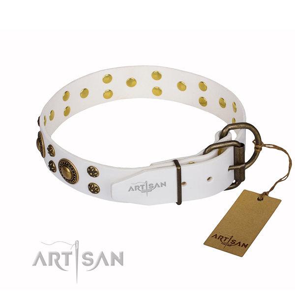 White leather dog collar with strong fittings