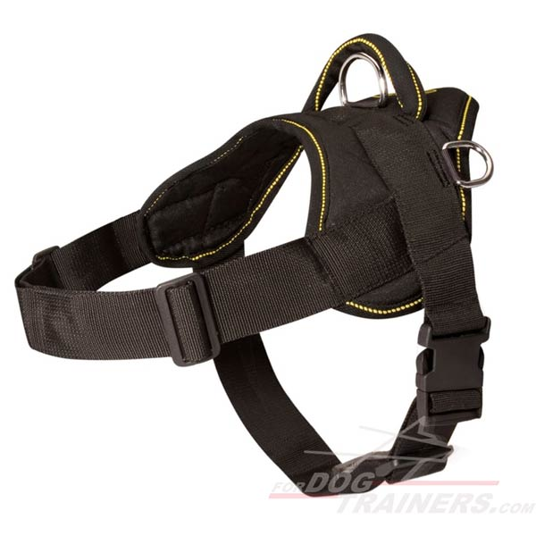 Lightweight Nylon Dog Harness Stitched for Strength