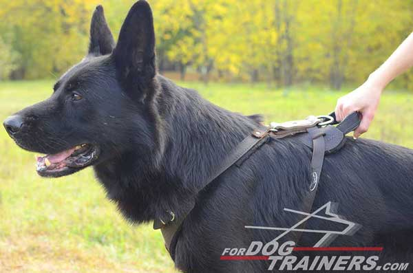 Training German Shepherd Harness Leather Dog Item with Handle
