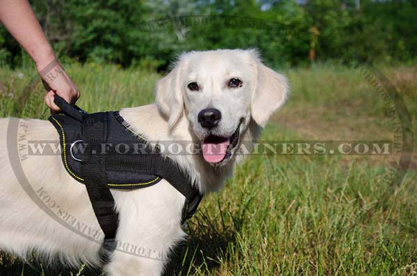 Nylon Golden Retriever Harness with Extra Strng Handle for Better Control