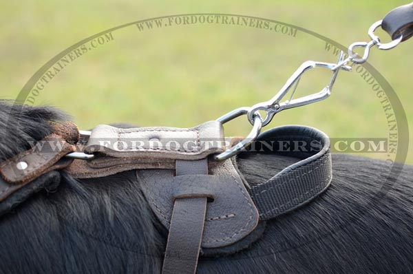 Durable Nickel D-Ring on Adjustable German Shepherd Harness Leather