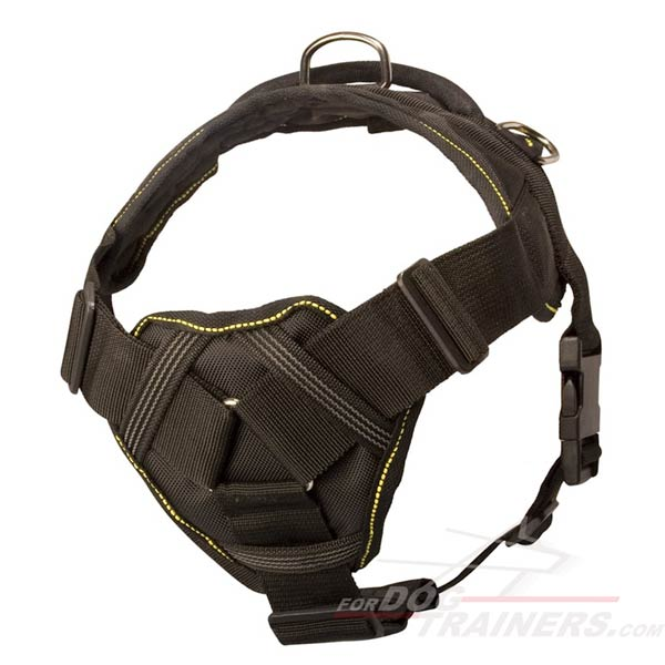 Dog harness with comfortable chest plate for Cane Corso