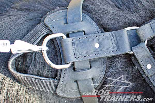 Rust resistant nickel plated fittings for leather Newfoundland harness