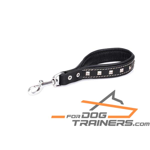Designer Dog Leash with Durable Fittings