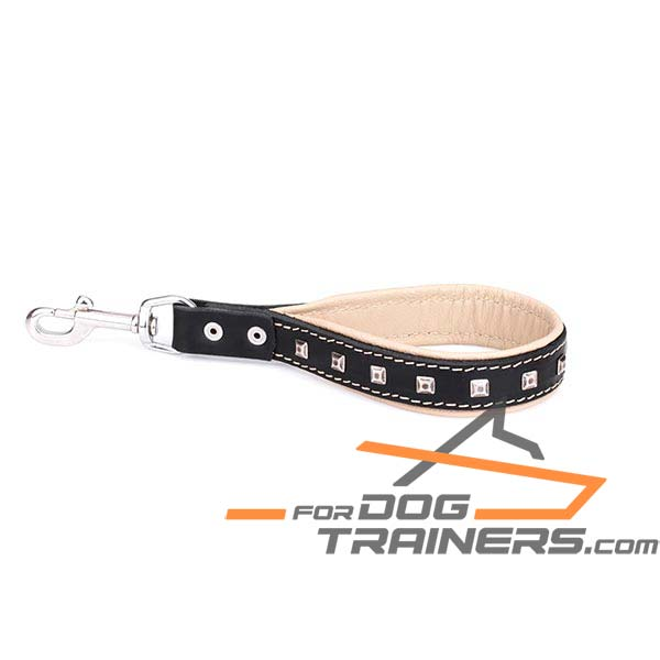 Leather dog leash with sturdy snap hook