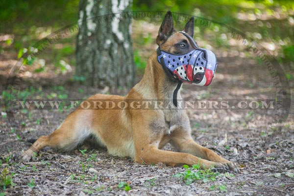 American Flag Pattern Dog Muzzle