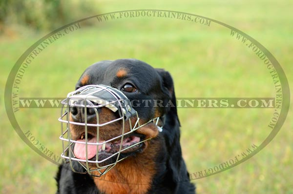 Perfect Wire Dog Muzzle for Free Breathing