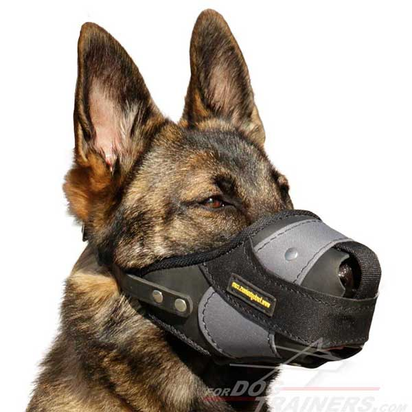 Softly Padded German Shepherd Muzzle for Extreme Comfort