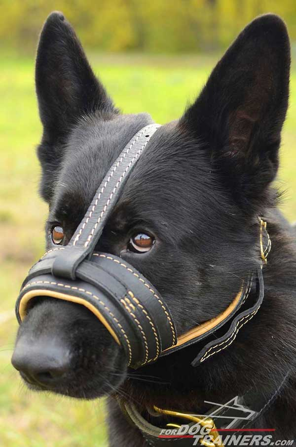 Soft Leather Muzzle for GSD