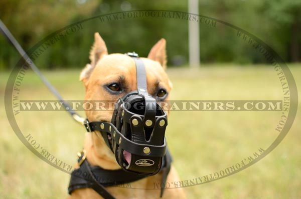 Easy Adjustable Leather Basket Pitbull Muzzle Lightweight
