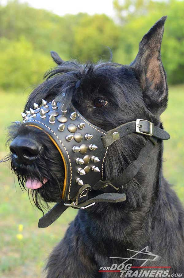 Easy Adjustable Leather Muzzle for Dog's Comfort