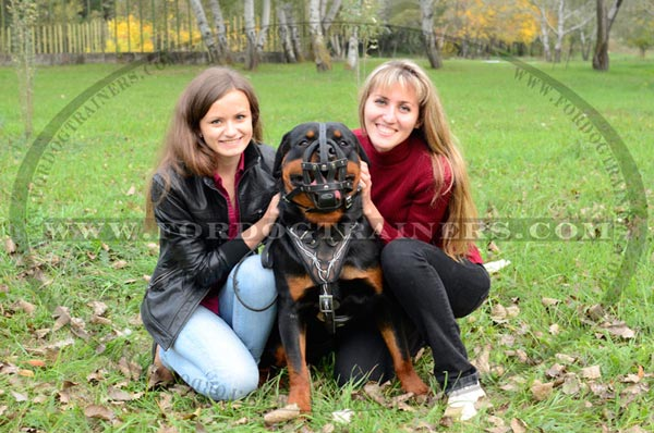 Comfortable Rottweiler Muzzle Easy Adjustable