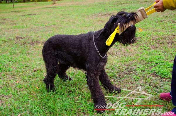 Jute bite Tug with 2 Handles for Riesenschnauzers