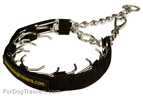 HS Pinch Dog Collar with Snap hook in Nylon  Protector