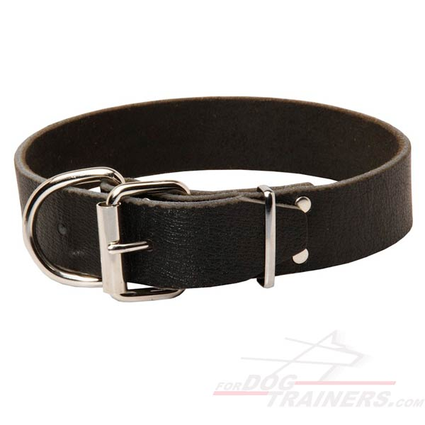 Durable Leather Dog Collar with Strong Buckle and D-ring