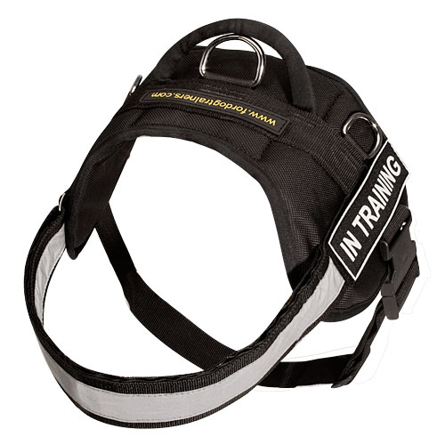 Canine Nylon Harness for Any Weather