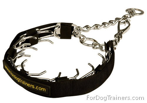 Prong Collar with QR snap hook