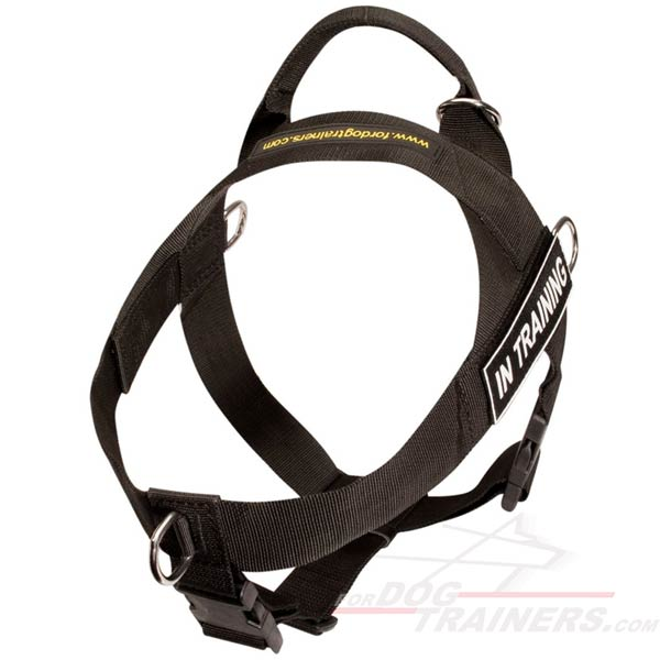 search and rescue dog harness - adjustable