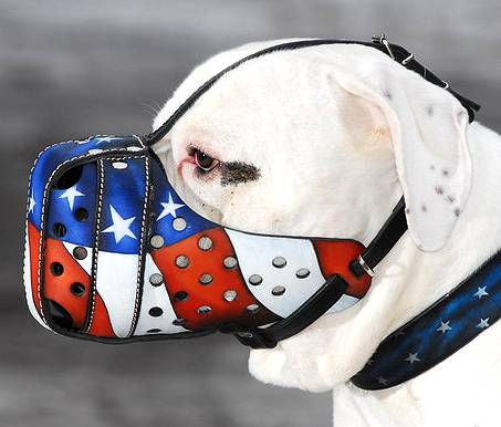 'American Flag' Painted Dog Muzzle to Prevent Biting
